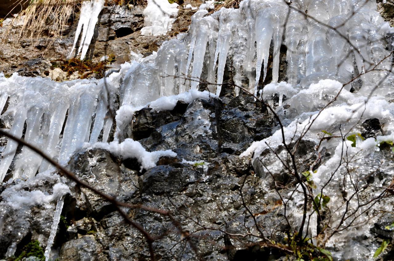 Quand la nature se fige - Mathay - Doubs - Février 2013