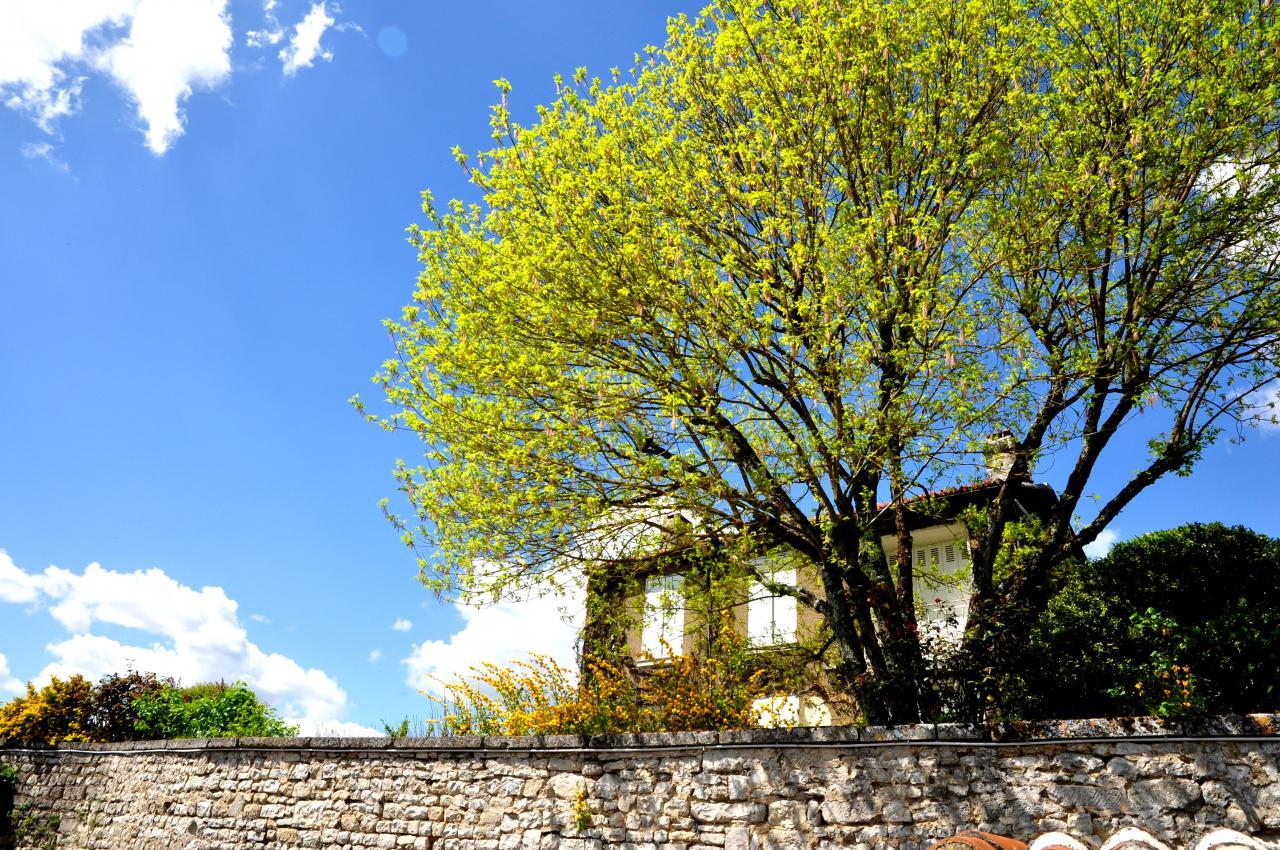 Village de Montignac - Charente - Avril 2013