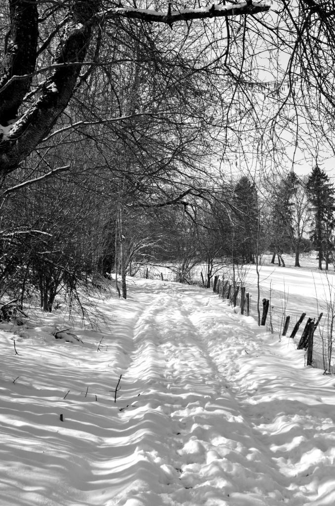 En arrivant au hameau de Lucelans - Doubs - Février 2013