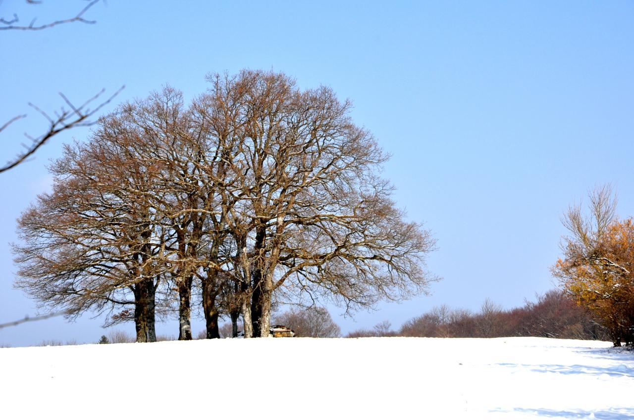 Hameau de Lucelans - Doubs - Février 2013