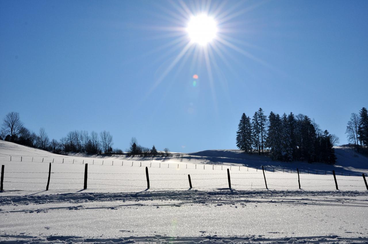 Nature en hiver à Charquemont - Doubs - Février 2013