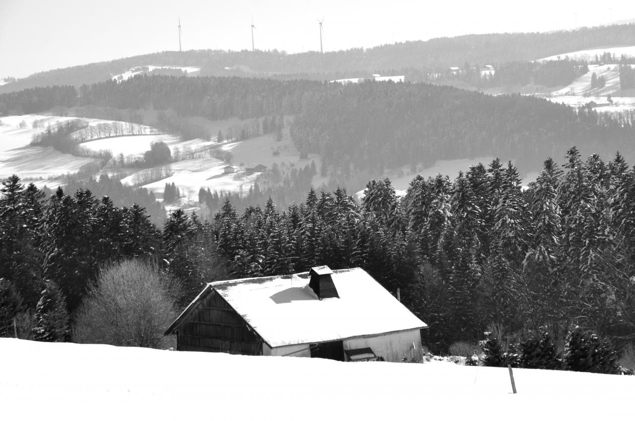 Paysage en hiver - Doubs - Février 2013