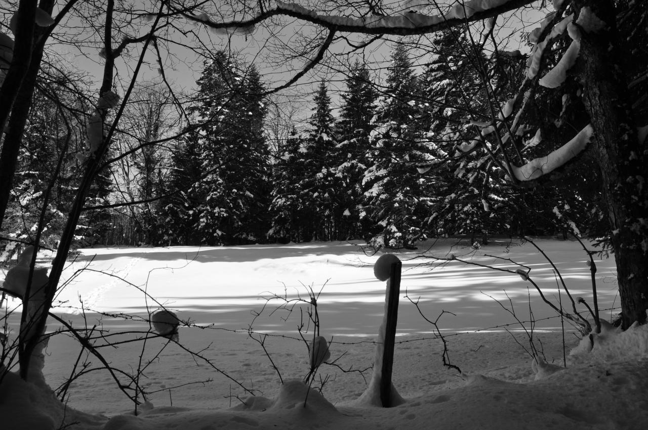 Paysage du plateau du Doubs - Février 2013