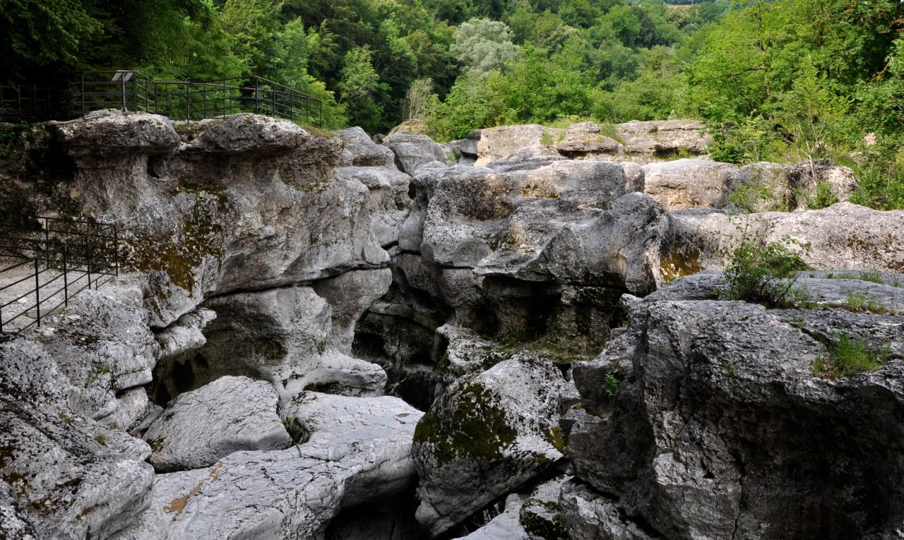 Les gorges du Fier - Haute-Savoie - Juillet 2016