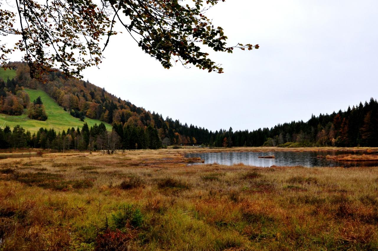 Lac de Lispach - Vosges - Octobre 2011