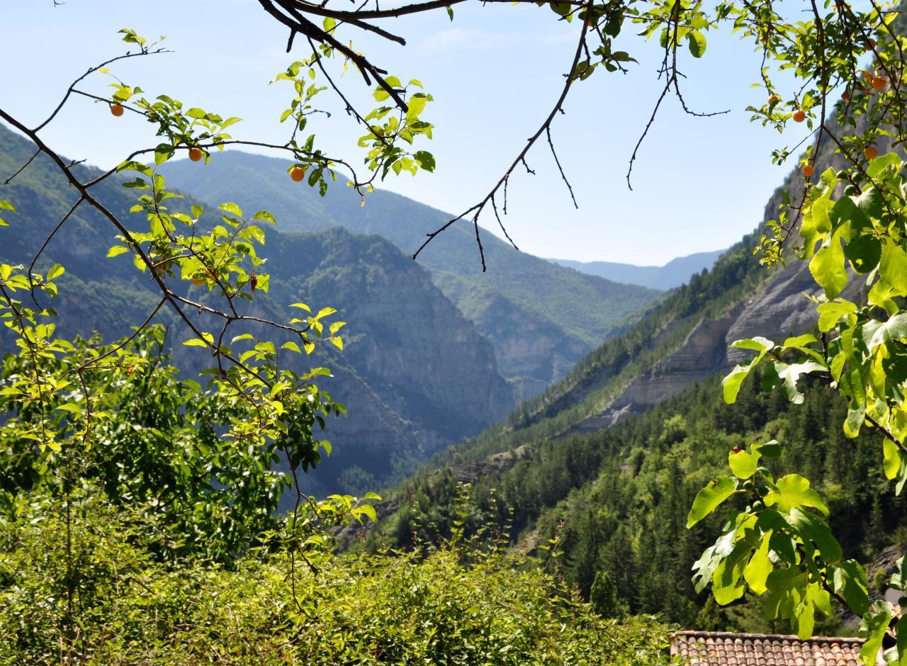 Rigaud - Alpes maritimes - Juillet 2015
