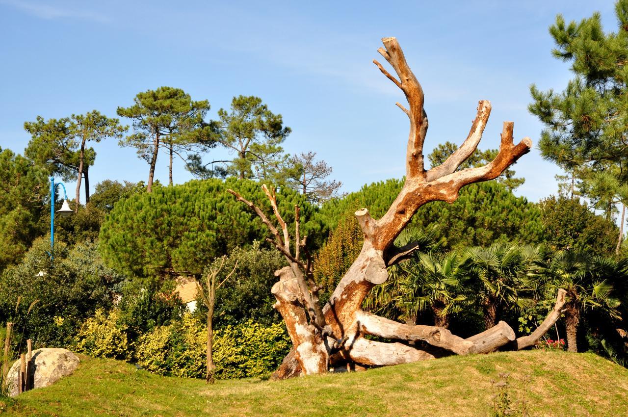 Zoo de La Palmyre - Charente maritime - Octobre 2012