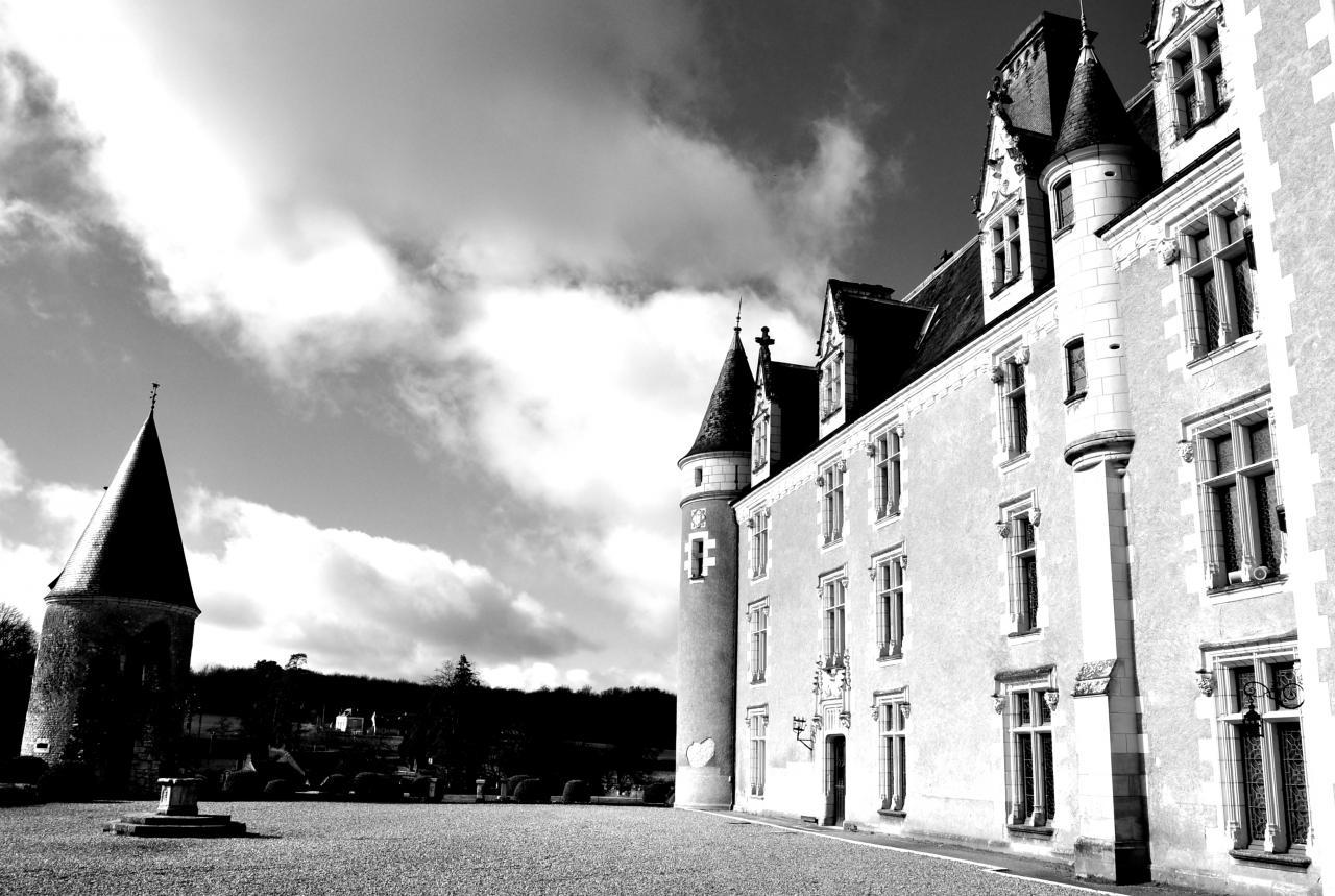 Château de Montpoupon - Indre-et-Loire - Février 2014