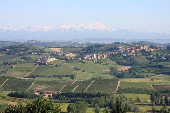 Paysage typique du Monferrato