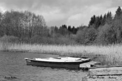 Lac de Bonlieu - Jura - Avril 2009