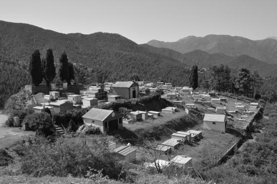 Morsaglia - Haute Corse - Août 2013