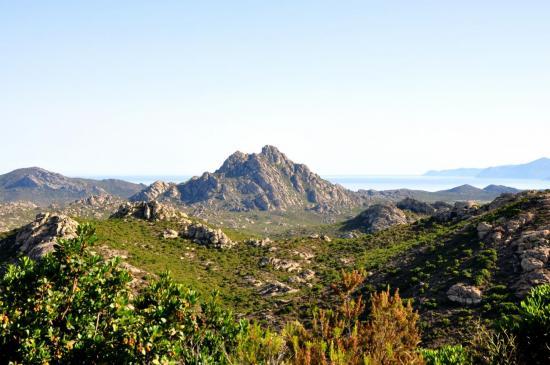 Désert des Agriates - Haute Corse - Août 2013