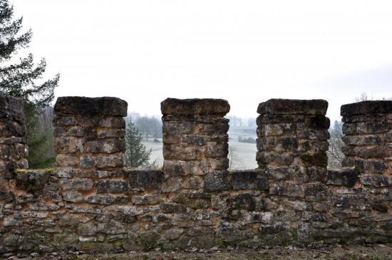 Château de Peyras - Charente - Mars 2012