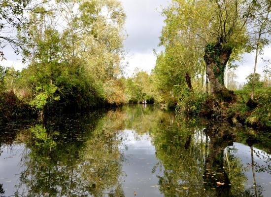 Marais Poitevin à Maillezais - Vendée - Octobre 2013