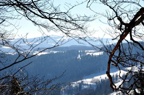 Aux environs du belvédère de La Cendrée - Doubs - Février 2013