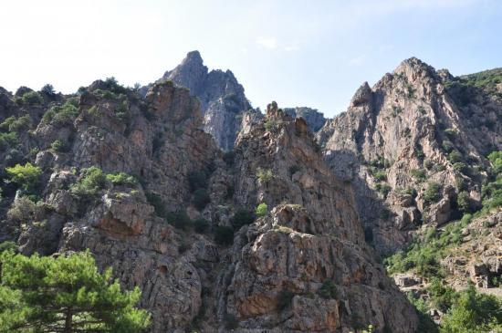 Gorges de l'Asco - Haute Corse - Août 2013