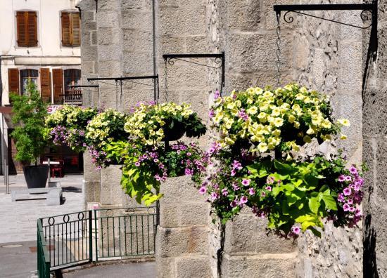 La Roche-Sur-Foron - Haute-Savoie - Juillet 2016