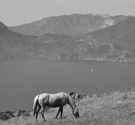 Calanques de Piana - Corse du sud - Août 2014