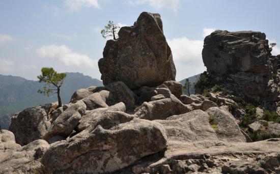 Alta Rocca - Août 2014