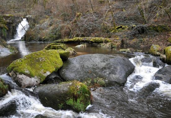 Cascades des Jarrauds - Creuse - Février 2015