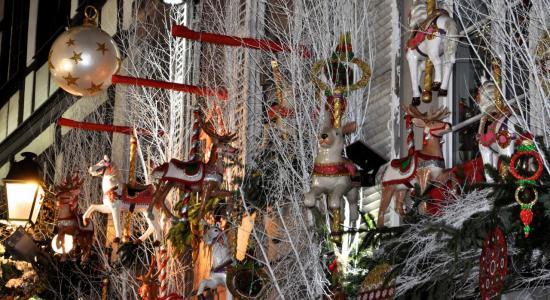 Féérie de Noël au marché de Strasbourg - Bas Rhin - Décembre 2013