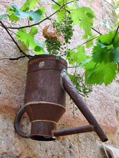 Alpes de Haute Provence - Juillet 2015