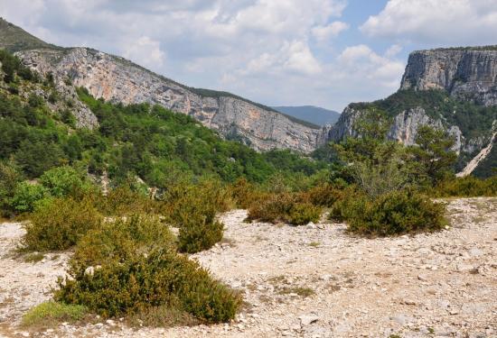 Point sublime - Gorges du Verdon - Juillet 2015