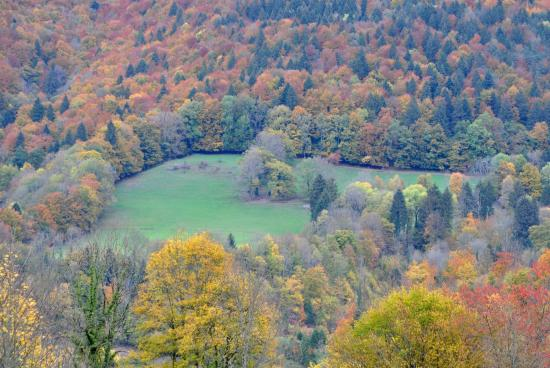 Goumois - Doubs - Octobre 2015