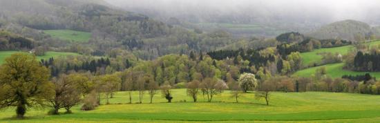 Fleurey - Doubs - Avril 2016