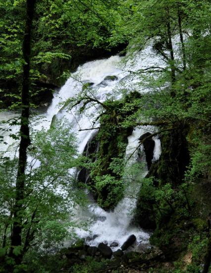 Le grand saut de la Loue - Doubs - Mai 2016