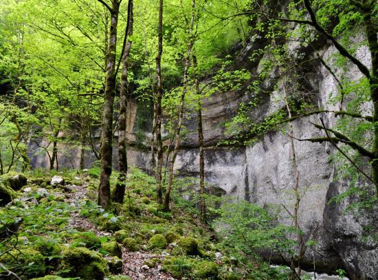 Haute vallée de la Loue - Doubs - Mai 2016