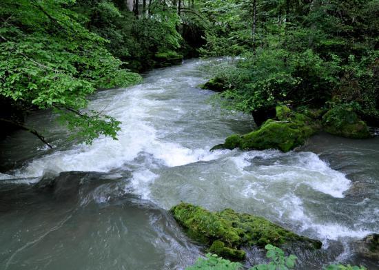La source du Pontet - Doubs - Mai 2016