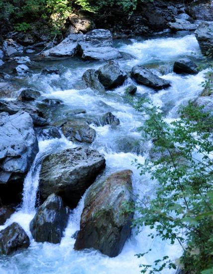 Gorges de la Diosaz - Haute-Savoie - Juillet 2016