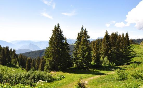 Parc de Merlet - Haute-Savoie - Juillet 2016
