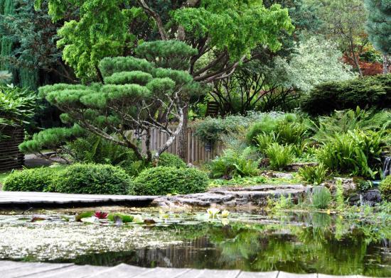 Les jardins aquatiques d'Acorus - Haute-Saône - Août 2016