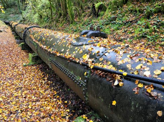 Cascade des combes - Jura - Octobre 2016