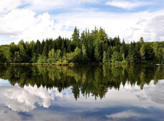 Mille étangs - Haute-Saône - Août 2017