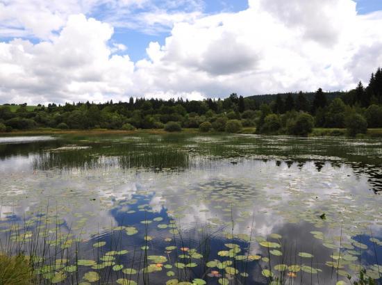Remoray - Doubs - Août 2017