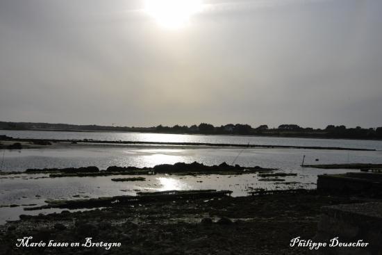 Coucher de soleil à marée basse dans le Morbihan - Juillet 2009