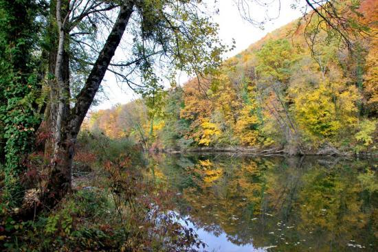 Bords du Doubs à Mathay - Doubs - Octobre 2009